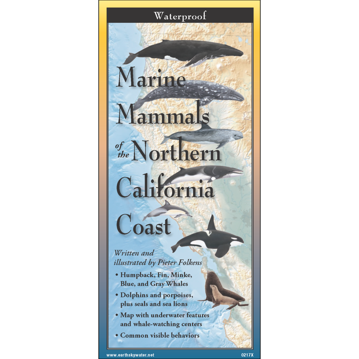 Marine Mammals of the Northern California Coast on map of vaquita, map of northeastern caribbean, map of orcas, map of england, map of wild horses, map of rhinoceros, map of starfish, map of shrimp, map of uk, map of chimps, map of lobsters, map of swans, map of slot canyons, map of wales with towns and cities, map of scotland, map of shark finning, map of icebergs, map of wales united kingdom, map of octopus,