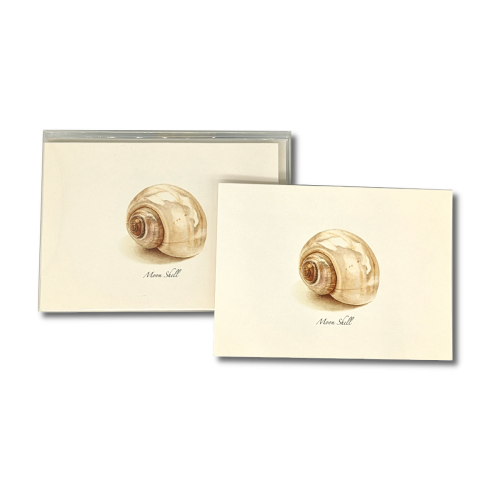 A box of Moon Shell notecards