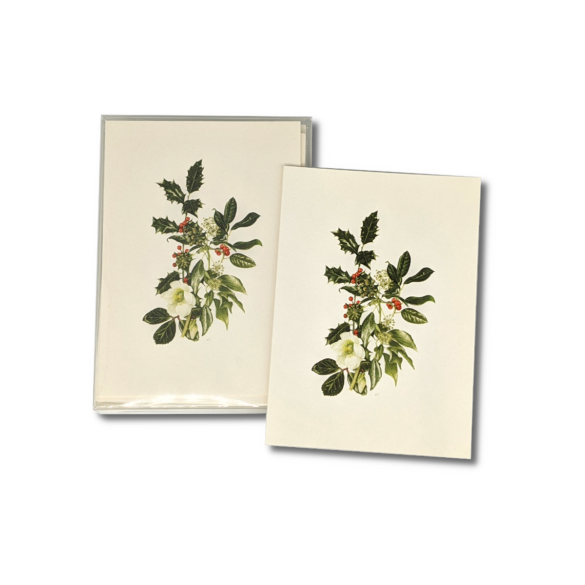 A box of Hellebore and Holly notecards