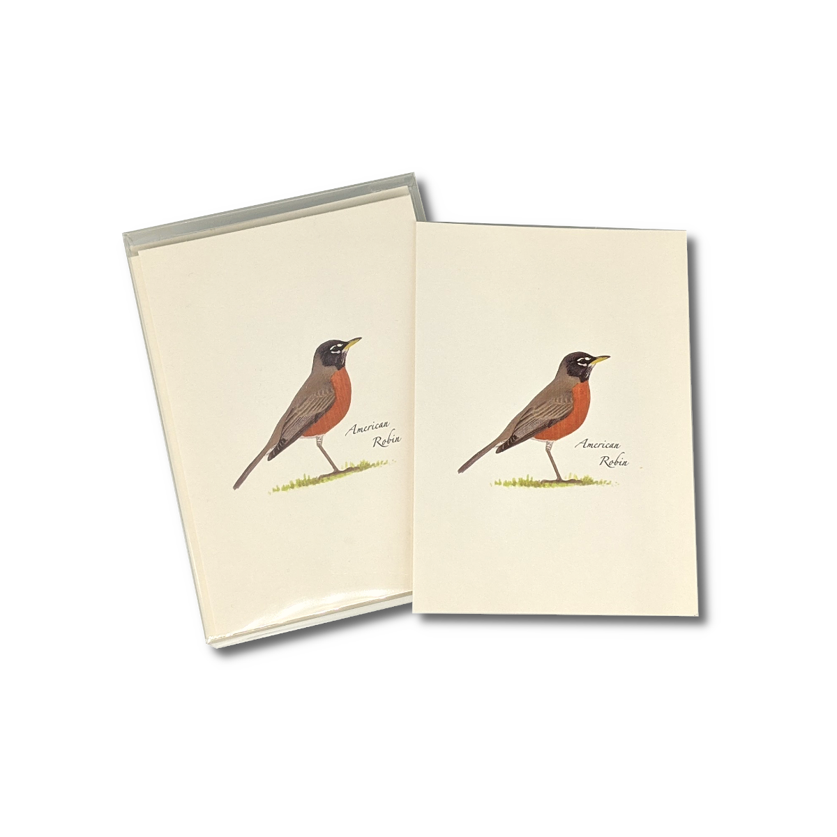 A box of American Robin notecards