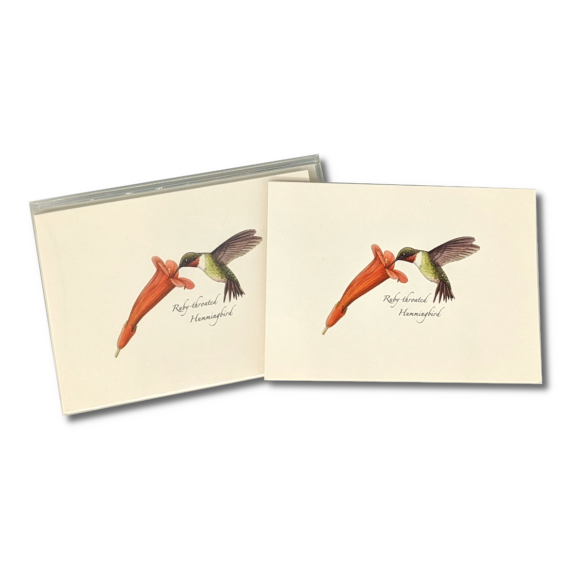 A box of Ruby-throated Hummingbird notecards