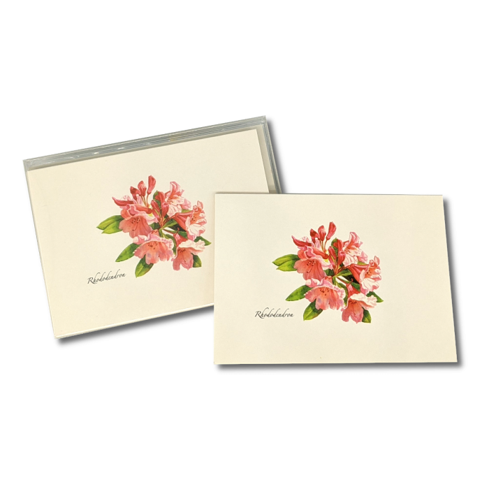 A box of Rhododendron notecards