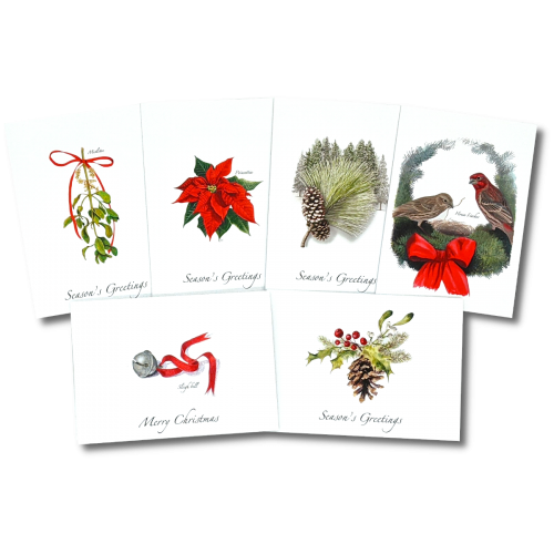 6 Holiday Card Bundle